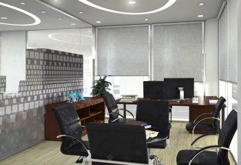 director-room